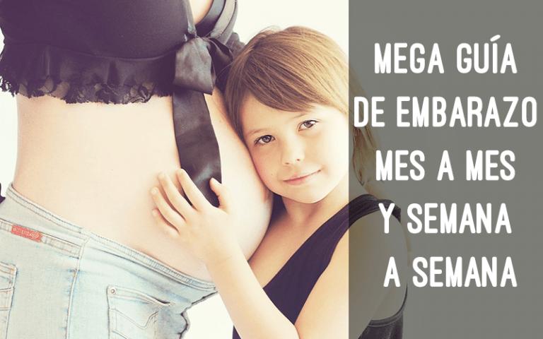 guia embarazo